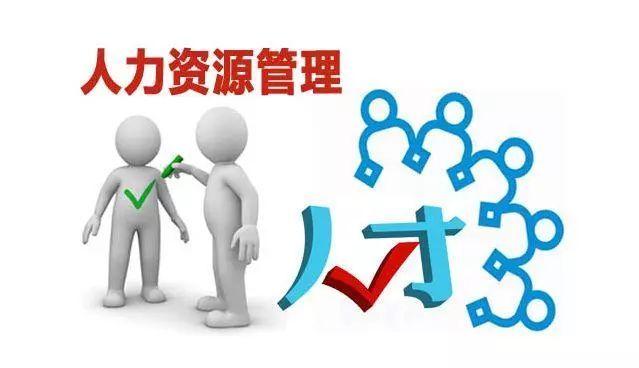 人力资源管理咨询